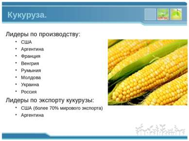 Лидеры по производству: США Аргентина Франция Венгрия Румыния Молдова Украина...