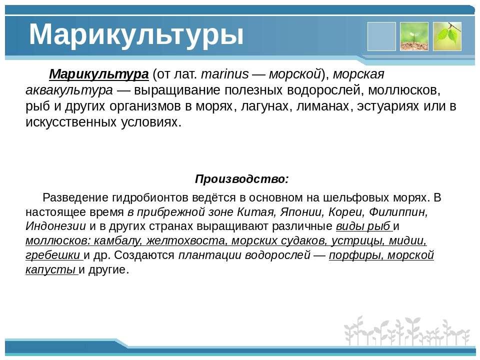 Марикультуры Марикультура (от лат. marinus — морской), морская аквакультура —...