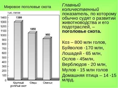 Мировое поголовье скота Главный количественный показатель, по которому обычно...