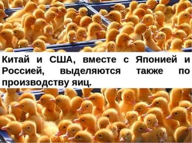 Китай и США, вместе с Японией и Россией, выделяются также по производству яиц.