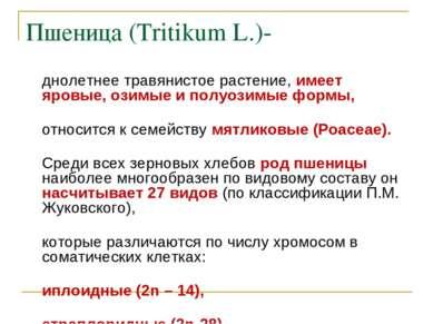Пшеница (Tritikum L.)- однолетнее травянистое растение, имеет яровые, озимые ...