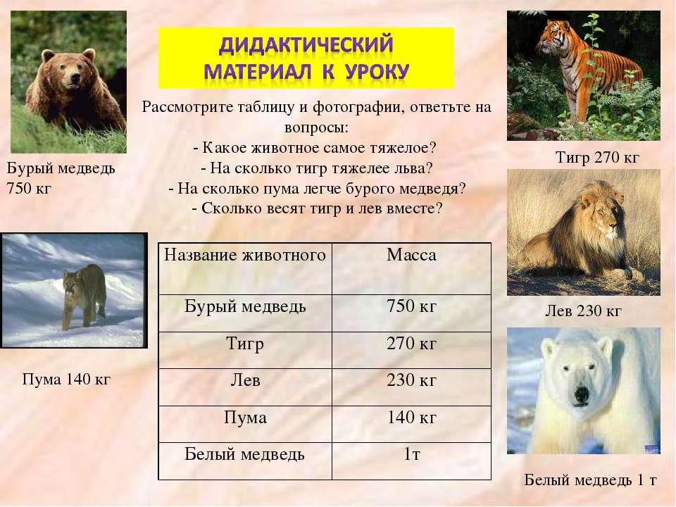 Рассмотрите таблицу и фотографии, ответьте на вопросы: - Какое животное самое...