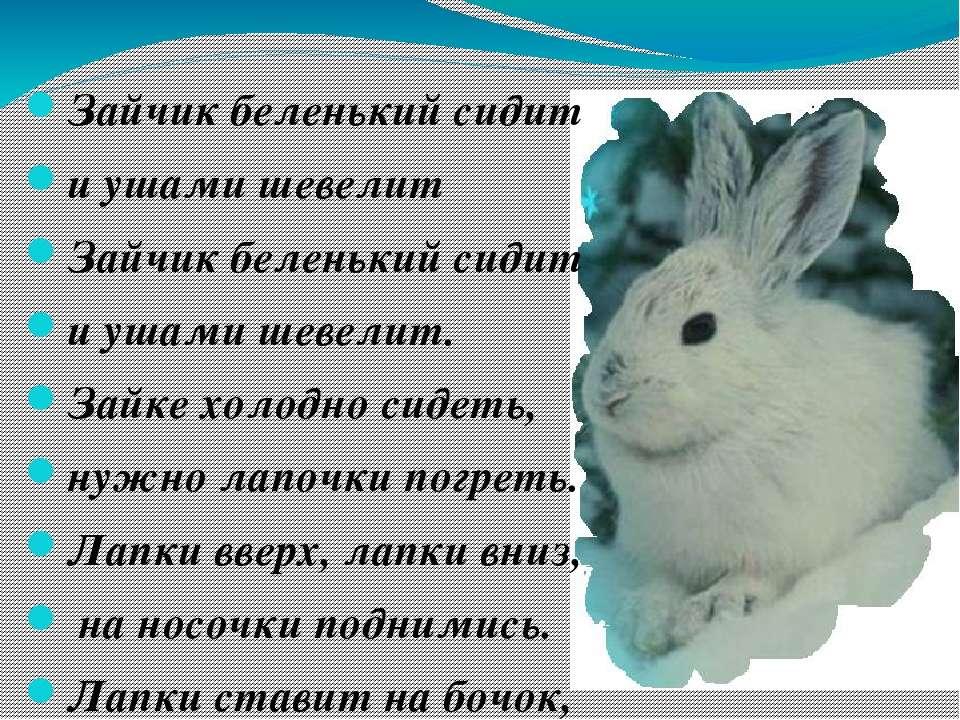 Зайчик беленький сидит и ушами шевелит Зайчик беленький сидит и ушами шевелит...