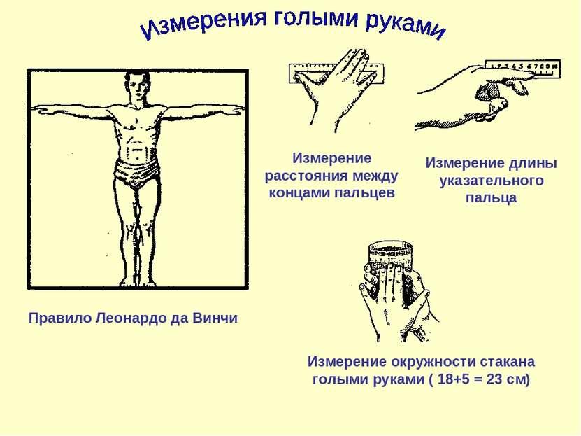 Правило Леонардо да Винчи Измерение расстояния между концами пальцев Измерени...