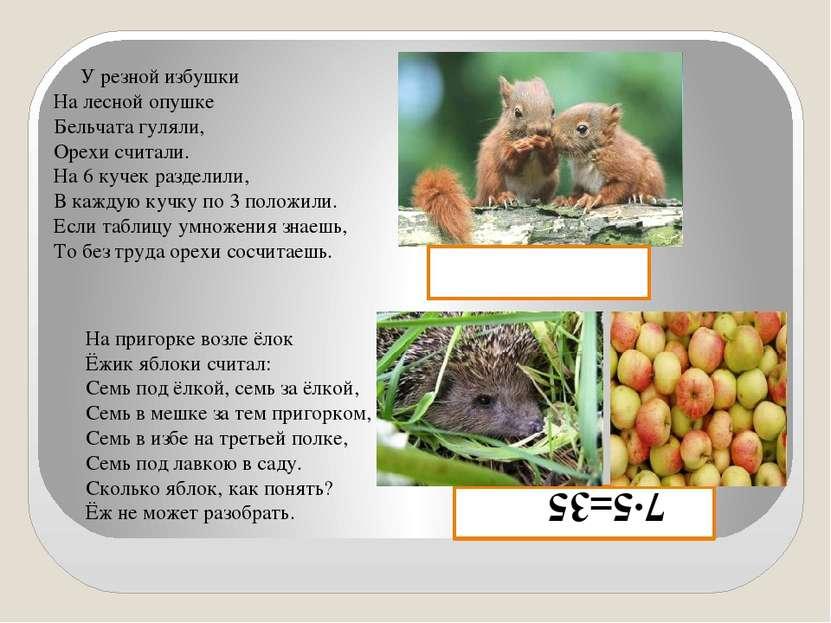 7∙5=35 (яб.) У резной избушки На лесной опушке Бельчата гуляли, Орехи считали...