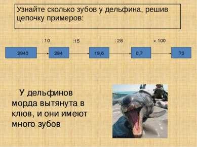 У дельфинов морда вытянута в клюв, и они имеют много зубов : 10 : 28 × 100 70...