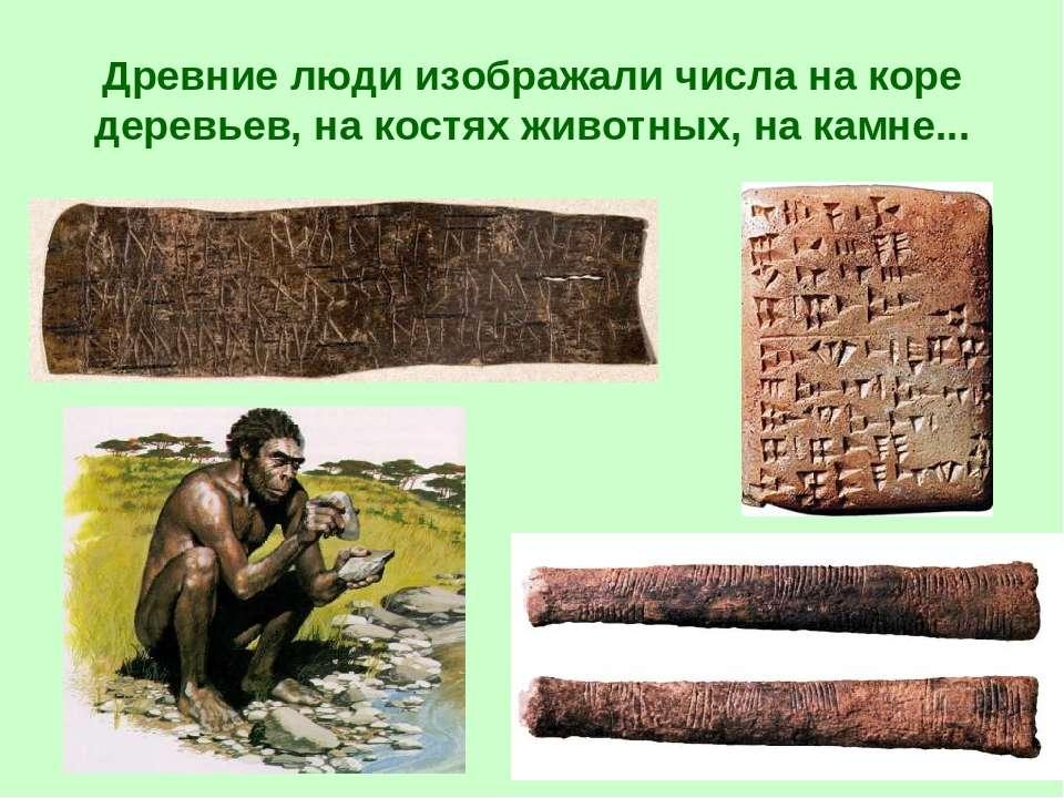 Древние люди изображали числа на коре деревьев, на костях животных, на камне...