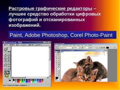 Растровые графические редакторы – лучшее средство обработки цифровых фотограф...