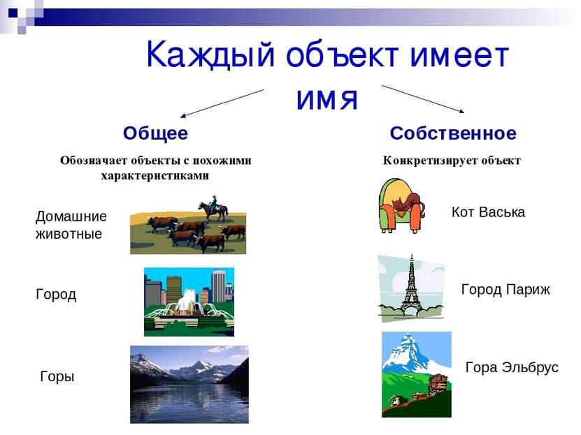 Каждый объект имеет имя Общее Обозначает объекты с похожими характеристиками ...