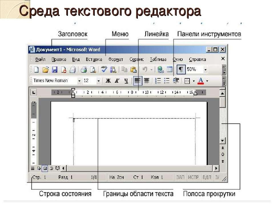 Среда текстового редактора