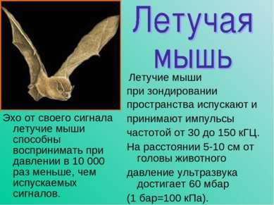 Эхо от своего сигнала летучие мыши способны воспринимать при давлении в 10 00...