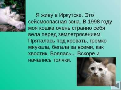 Я живу в Иркутске. Это сейсмоопасная зона. В 1998 году моя кошка очень странн...