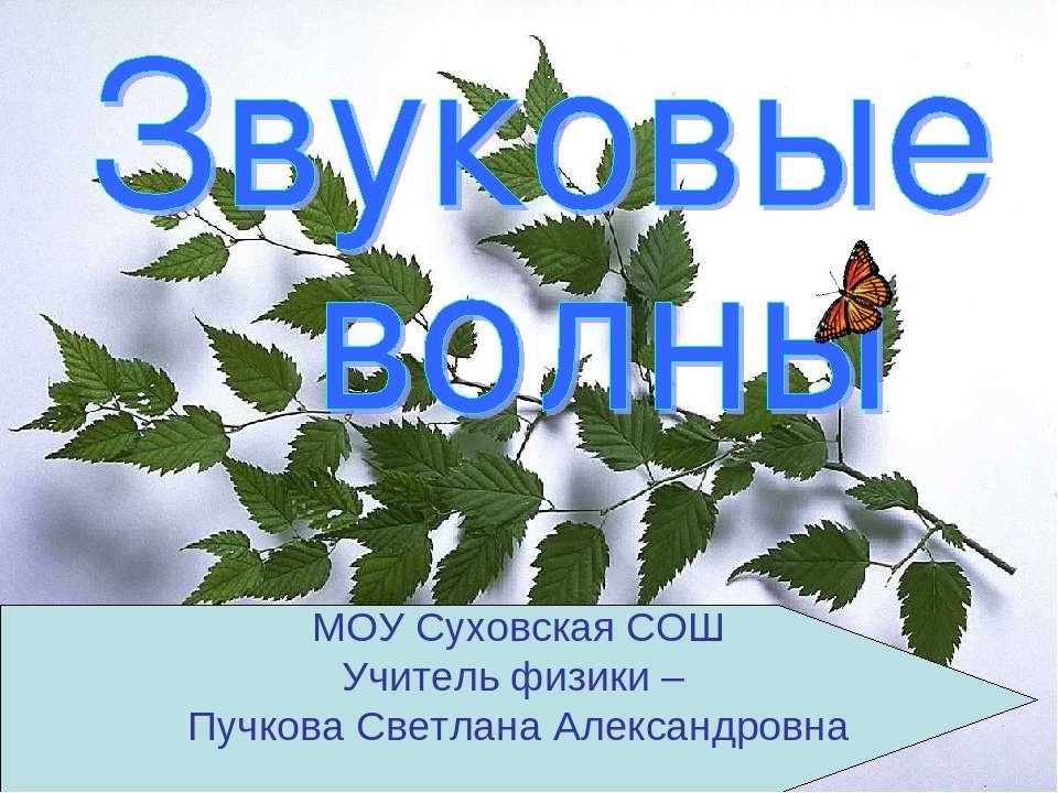 МОУ Суховская СОШ Учитель физики – Пучкова Светлана Александровна
