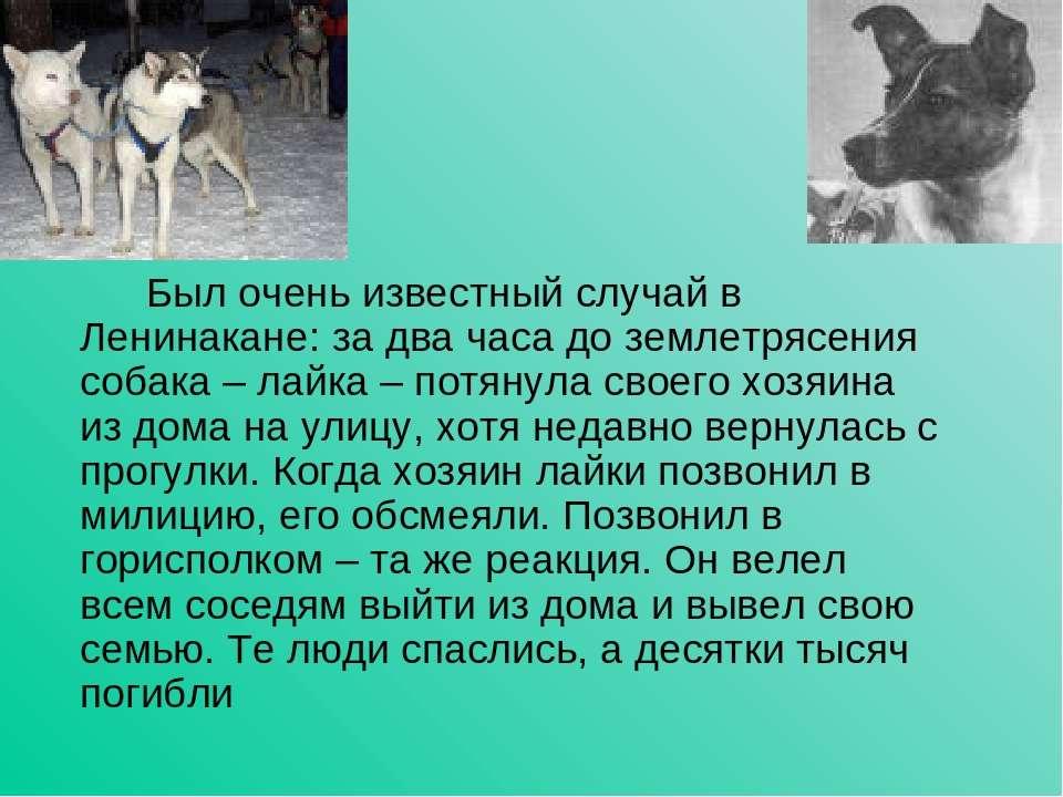 Был очень известный случай в Ленинакане: за два часа до землетрясения собака ...