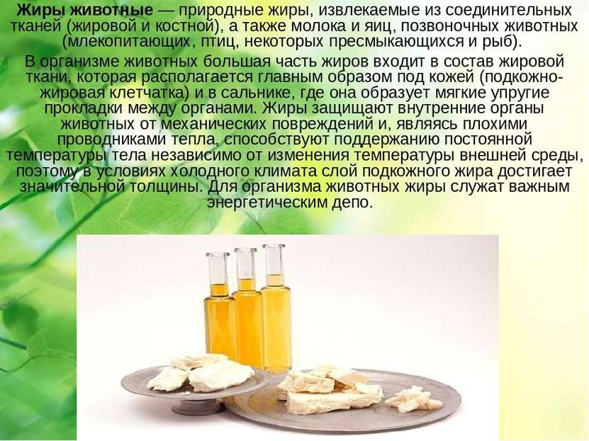 Жиры животные— природные жиры, извлекаемые из соединительных тканей (жировой...