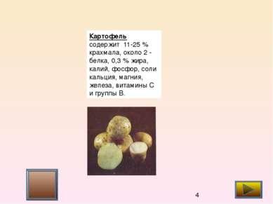 корнеплоды 2 (белые коренья) Эти корнеплоды содержат эфирные масла, витамин С...