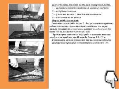 Последовательность разделки осетровой рыбы. 1 – срезание спинного плавника и ...