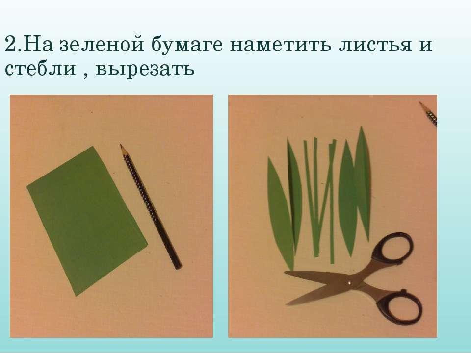 2.На зеленой бумаге наметить листья и стебли , вырезать