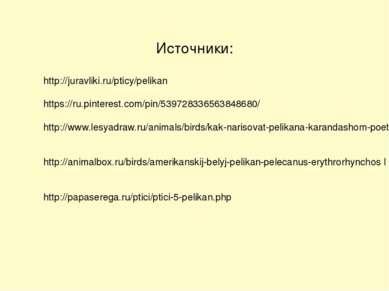 Источники: http://juravliki.ru/pticy/pelikan https://ru.pinterest.com/pin/539...