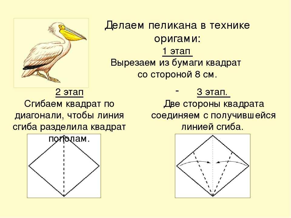 Делаем пеликана в технике оригами: 1 этап Вырезаем из бумаги квадрат со сторо...