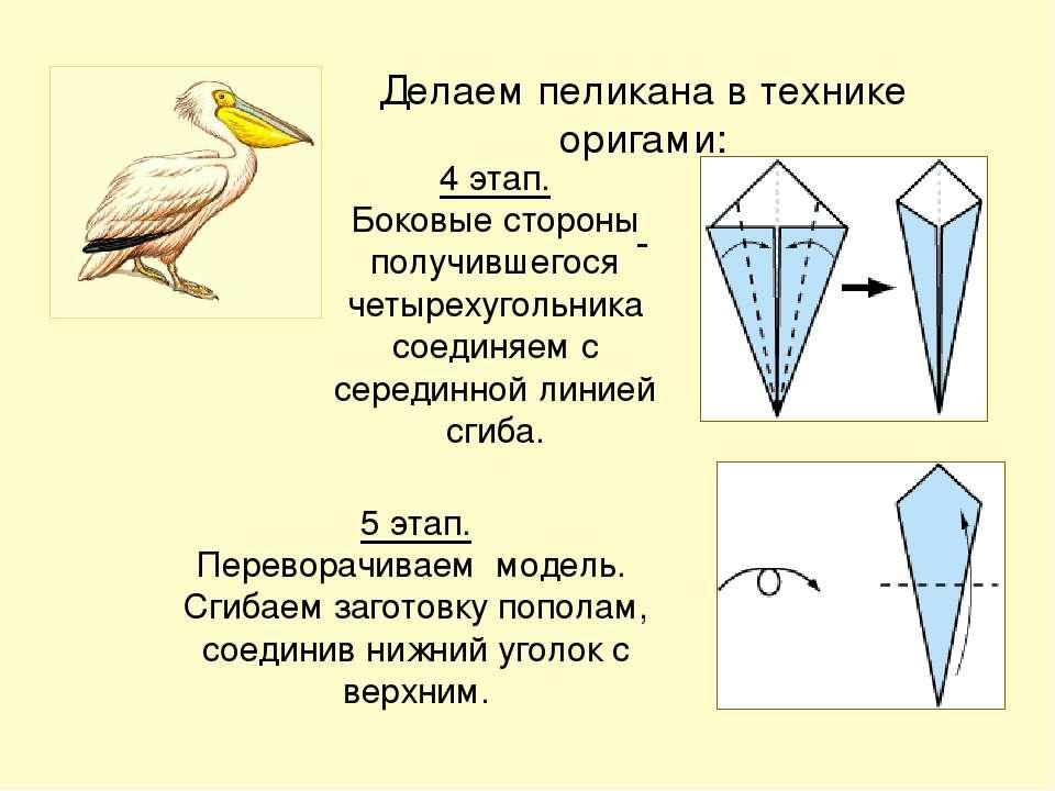 Делаем пеликана в технике оригами: 5 этап. Переворачиваем модель. Сгибаем заг...
