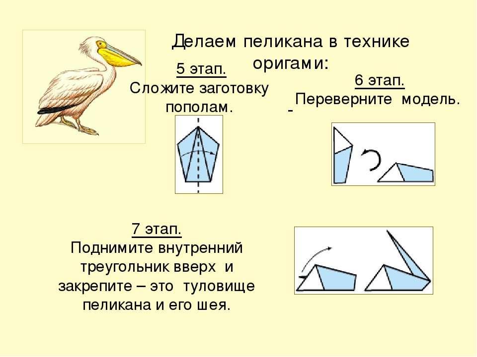 Делаем пеликана в технике оригами: 5 этап. Сложите заготовку пополам. 6 этап....