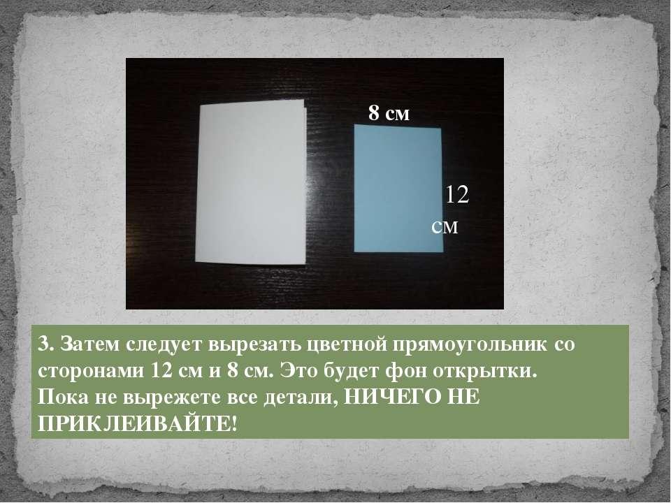 3. Затем следует вырезать цветной прямоугольник со сторонами 12 см и 8 см. Эт...
