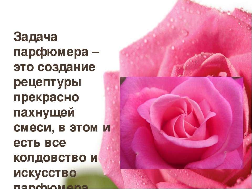 Задача парфюмера – это создание рецептуры прекрасно пахнущей смеси, в этом и ...