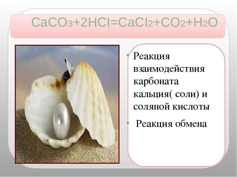 CaCO3+2HCI=CaCI2+CO2+H2O Реакция взаимодействия карбоната кальция( соли) и со...