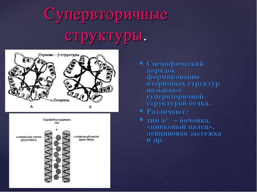 Супервторичные структуры. Специфический порядок формирования вторичных структ...
