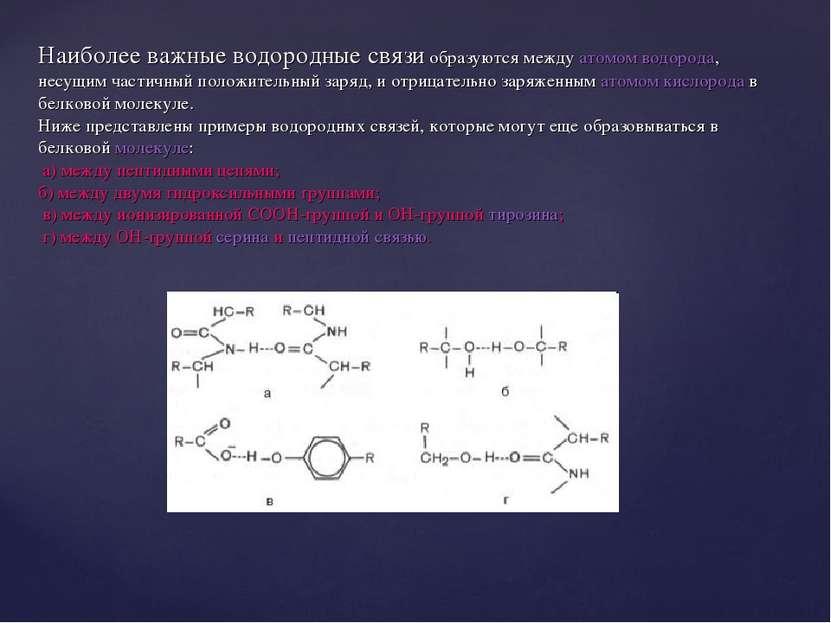 Наиболее важные водородные связи образуются между атомом водорода, несущим ча...