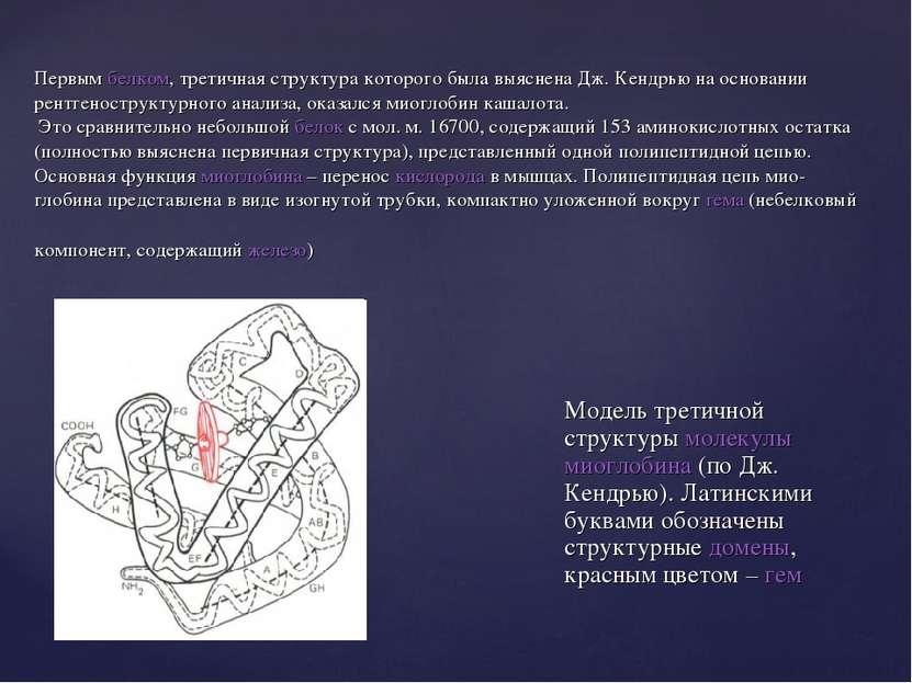 Первым белком, третичная структура которого была выяснена Дж. Кендрью на осно...