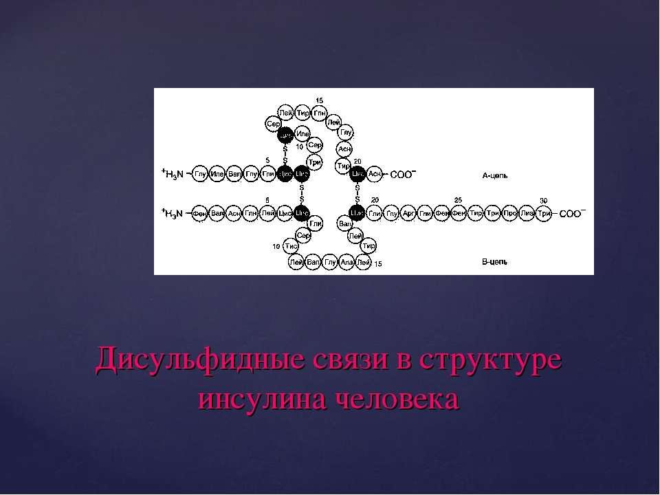 Дисульфидные связи в структуре инсулина человека