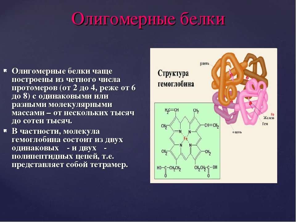 Олигомерные белки Олигомерные белки чаще построены из четного числа протомеро...