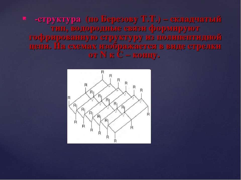 β-структура (по Березову Т.Т.) – складчатый тип, водородные связи формируют г...