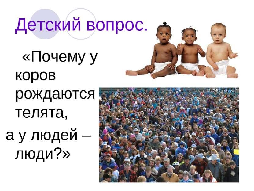 Детский вопрос. «Почему у коров рождаются телята, а у людей – люди?»