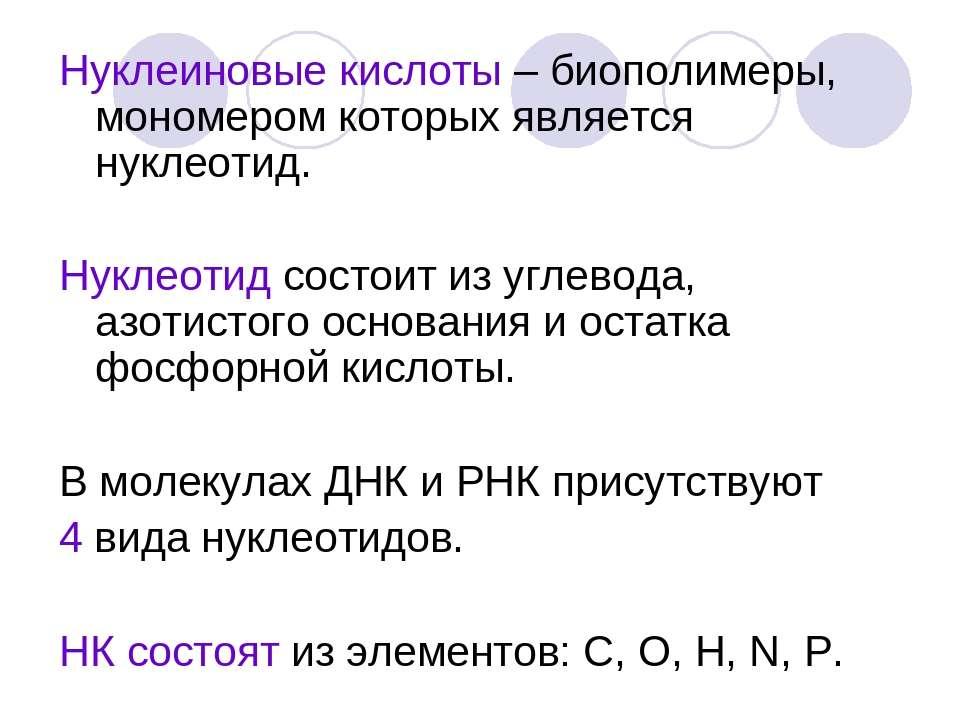 Нуклеиновые кислоты – биополимеры, мономером которых является нуклеотид. Нукл...