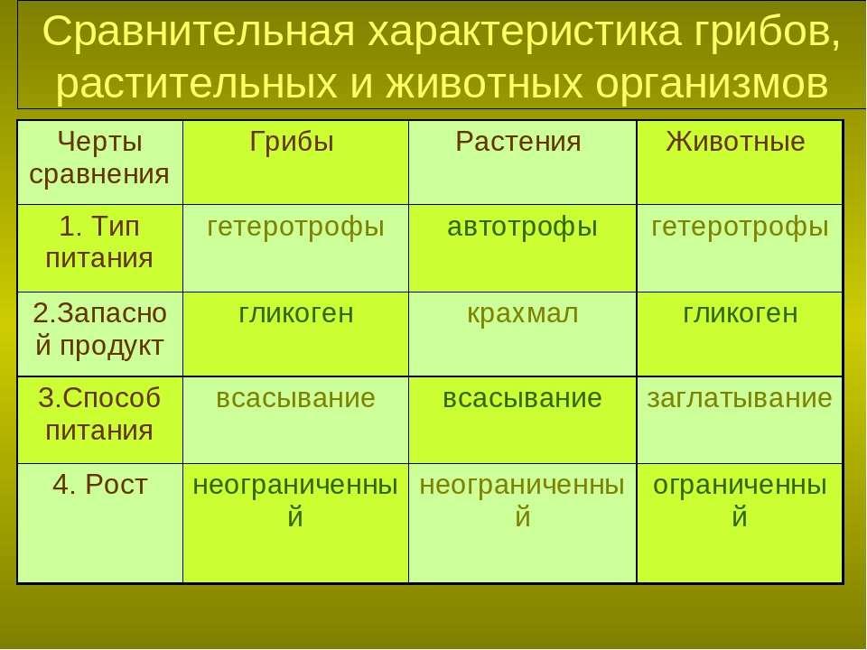 Сравнительная характеристика грибов, растительных и животных организмов Черты...