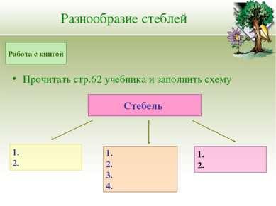 Разнообразие стеблей Прочитать стр.62 учебника и заполнить схему Работа с кни...