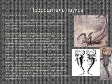 Прородитель пауков Птериготус и Эвриптерус В лагунах силурийских морей достиг...