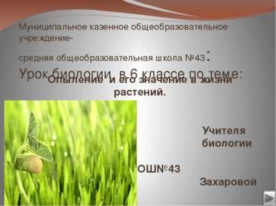 «Я вам - вы мне»- я вам называю и показываю лекарственное растение- вы мне ти...