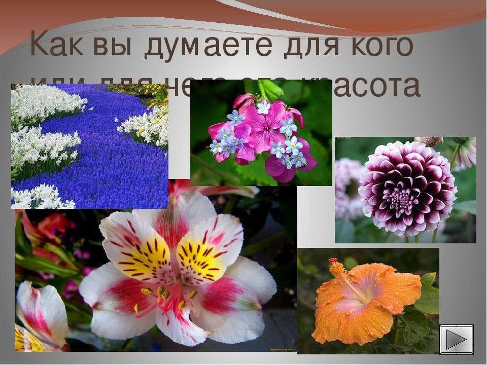 К растением опыляющимся с помощью ветра относятся: лещина, ива, ольха, осина,...