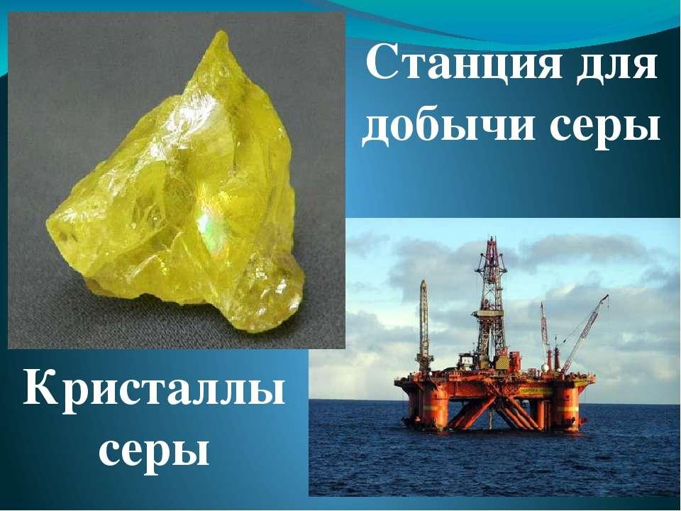 Самый же интересный вид минерального сырья Мирового океана - это знаменитые ж...