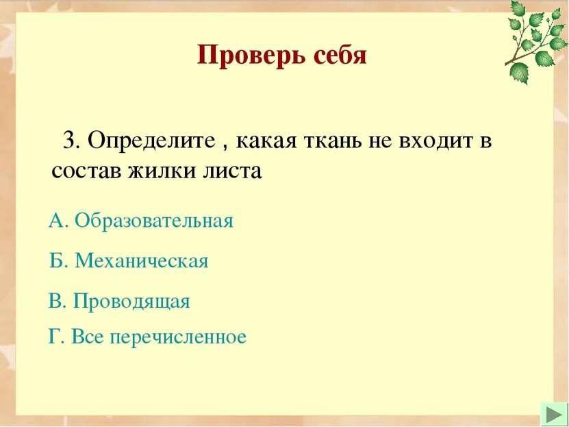 3. Определите , какая ткань не входит в состав жилки листа Проверь себя Б. Ме...