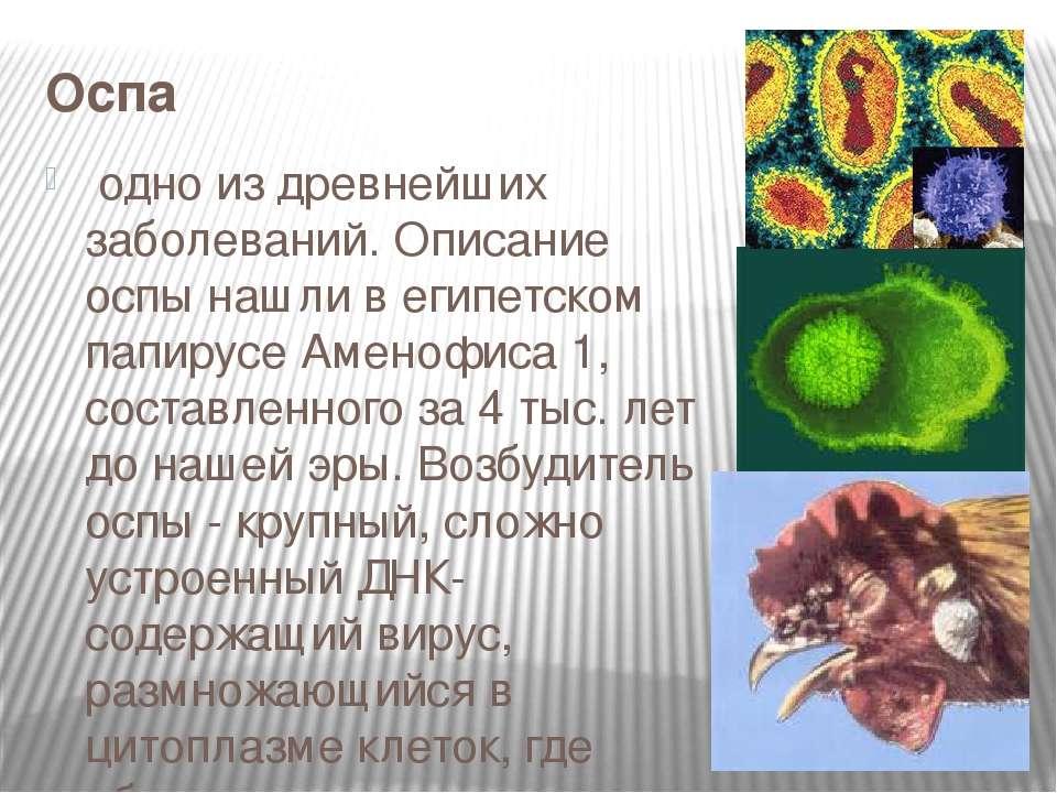 Оспа одно из древнейших заболеваний. Описание оспы нашли в египетском папиру...