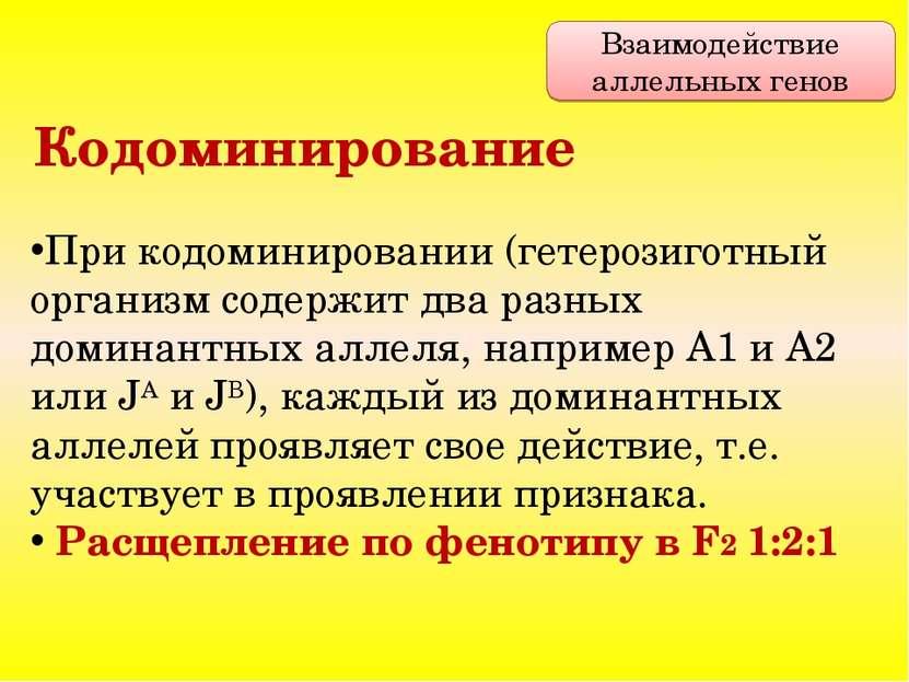 При кодоминировании (гетерозиготный организм содержит два разных доминантных ...