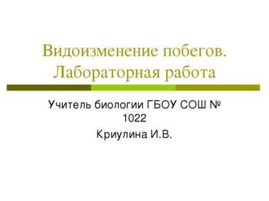 Видоизменение побегов. Лабораторная работа Учитель биологии ГБОУ СОШ № 1022 К...