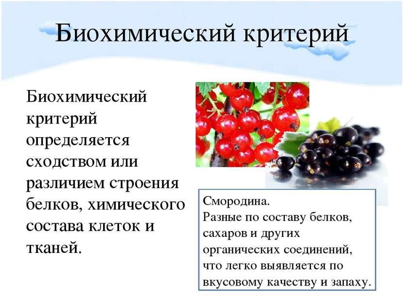 Биохимический критерий Биохимический критерий определяется сходством или разл...