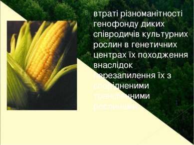 втраті різноманітності генофонду диких співродичів культурних рослин в генети...
