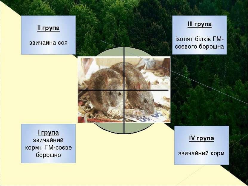 ІІ група звичайна соя ІІІ група ізолят білків ГМ-соєвого борошна І група звич...